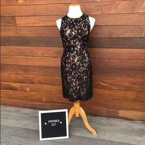 French Connection NWT Lace Dress